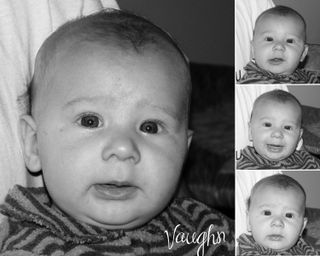 Vaughn Collage